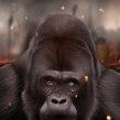 Gorila. Un projet de Illustration, Beaux Arts , et Peinture de Jaime Sanjuan Ocabo - 15.03.2015