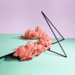The Mushroom Project. Um projeto de Artes plásticas e Fotografia de Paloma Rincón - 08.11.2015