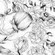 Cover Jesy Almaguer.. A Illustration project by Violeta Hernández - 06.22.2016