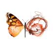 Basuraleza. Un proyecto de Diseño, Ilustración, Publicidad y Dibujo de Adolfo Serra - 21.08.2018