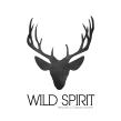 Wild Spirit. A Shoe Design, and Fashion Design project by Josefina Allendes - 06.28.2019
