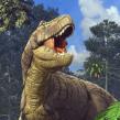Good Luck Sock Dinosaurs. A 3-D, Illustration und Digitale Illustration project by Román García Mora - 15.03.2018