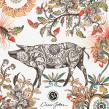 CINCO JOTAS. Un proyecto de Ilustración, Publicidad y Packaging de Carmen García Huerta - 01.01.2019