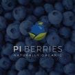 PI Berries   Film Promocional. A Audiovisuelle Produktion project by Contra Fotografía & Video - 06.09.2019