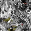 Aura. A Collage, Illustration, and Digital illustration project by Alejandra Acosta - 12.18.2019