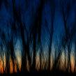 Orbis Terrarum. Un progetto di Fotografia , e Paesaggismo di Manu Torres - 22.01.2020