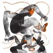 GRAN SALÓN MEXICO 2018. Un proyecto de Ilustración digital de Jimena Estíbaliz - 06.04.2020