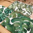 Aquarela Botânica Um / Acuarela Botánica Uno. Um projeto de Ilustração, Pintura em aquarela e Ilustração botânica de Isabela Quintes - 09.05.2018