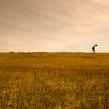Sesión de fotos para nuevo álbum TRECE de Ándres Cepeda Sony-music Colombia. A Fotografie, Porträtfotografie, Digitalfotografie, Artistische Fotografie, Außenfotografie, Werbefotografie und Fotografie für Instagram project by Ricardo Pinzón Hidalgo - 15.05.2020