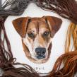 Pet Portrait Collection . A Embroider project by Emillie Ferris - 07.16.2017