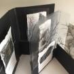 Nuevo proyecto 'Sin pliegues': 'Arboretum' con acetatos. A Bookbinding project by Susana Dominguez Martin - 10.20.2020