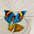 Double-sided 3D embroidery butterfly. A 3D, and Embroider project by shan - 01.01.2020