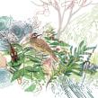 Biología evolutiva. Um projeto de Ilustração naturalista de Elizabeth Builes Carmona - 16.02.2021