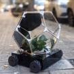 Fluid Farm:  Herbie. A Design project by Cecilia Tham - 25.03.2021