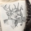 Stag. A Sketching, and Naturalist Illustration project by Jenny Rae - 04.12.2021
