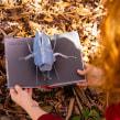 Mi Proyecto del curso: Libros pop-up interactivos: crea mundos de papel. Un proyecto de Artesanía, Diseño editorial, Papercraft, Encuadernación y Creatividad con niños de Silvia Hijano Coullaut - 17.05.2021