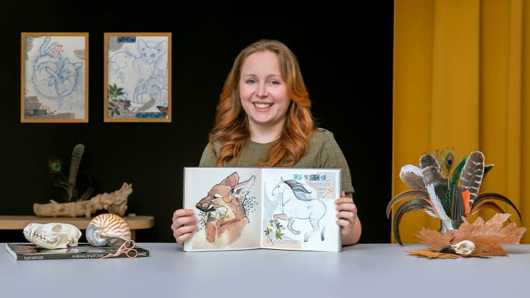 Animal Illustration: Capturing Wildlife in a Sketchbook