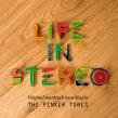 Pinker Tones. Un proyecto de Diseño gráfico y Packaging de Lo Siento Studio - 28.03.2016