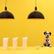 Rediseño y Campaña RACO . Un proyecto de Dirección de arte, Br, ing e Identidad, Consultoría creativa, Diseño de interiores y Diseño de iluminación de Masquespacio - 15.09.2016