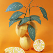 Paper fruits: Lemon. Un proyecto de Diseño, Ilustración, Paisajismo, Diseño de producto y Papercraft de Diana Beltran Herrera - 07.12.2017