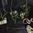 [Accesorios vivos de Suculentas]. Un proyecto de Diseño y Paisajismo de Compañía Botánica - 21.05.2018