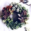 [Rosca de Suculentas]. Um projeto de Design e Paisagismo de Compañía Botánica - 21.05.2018