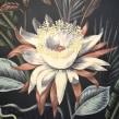 Princesa de la Noche. A Illustration, Fine Art, and Painting project by Lucila Dominguez - 10.18.2018