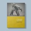 El universo de la India. Un proyecto de Diseño y Diseño editorial de Javier Alcaraz - 10.08.2014