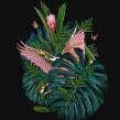 AMOR POR MÉXICO. A Textile illustration project by Ricardo Luévanos - 05.27.2017