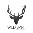 Wild Spirit. A Shoe Design, and Fashion Design project by Josefina Allendes - 06.28.2019