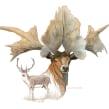 ¡Este Pollo es un Tiranosaurio!. A Illustration, and Digital illustration project by Román García Mora - 04.15.2017