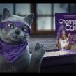 Champion Cat Ninja. Un proyecto de 3D, Animación de personajes, Animación 3D y Diseño de personajes 3D de Juan Paulo Mardónez - 19.08.2019