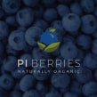 PI Berries | Film Promocional. Un proyecto de Realización audiovisual de Contra Foto / Video - 06.09.2019