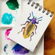 DIARIOS - MIS INSECTOS. A Illustration, and Watercolor painting project by Paulina Maciel · Canela - 10.04.2019