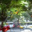 Proyecto Ventanas. Un proyecto de Arquitectura y Bellas Artes de Leonardo Gauna - 27.02.2020