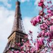 París. Un proyecto de Fotografía para Instagram de Nicolás Ferreyra - 13.03.2020