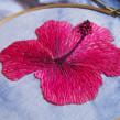 Plantas bordadas. A Embroider project by Juliana Mota Giopato - 07.14.2020