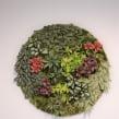 Circular paper greens. Un proyecto de Artesanía, Papercraft y Decoración de interiores de Eileen Ng - 21.07.2020