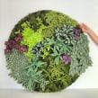 Circular paper greens. Um projeto de Artesanato, Papercraft e Decoração de interiores de Eileen Ng - 21.07.2020