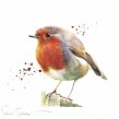 Round robin. A Watercolor Painting project by Sarah Stokes - 10.22.2020