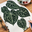 The colors of houseplants. Un proyecto de Ilustración, Pintura, Pintura a la acuarela e Ilustración botánica de Isabela Quintes - 10.11.2020