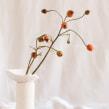 A C C I D E N T A L  · Serie de objetos fruto del azar. Um projeto de Artesanato e Fotografia do produto de Flo Corretti - 27.10.2020