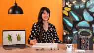 Wissenschaftliche Illustration für das Musterdesign . A Illustration course by Diana Flores Blazquez