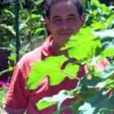 Norberto Gomez