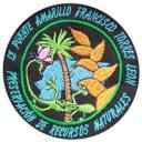 Puente Amarillo Francisco Torres León