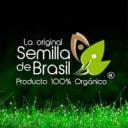 Semillaoriginal Brasil