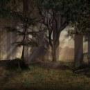 Background Landscapes. Um projeto de Design, Desenvolvimento de software e 3D de Siriö Aštaröt - 16.11.2010