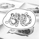 Wasara Birds. A Illustration project by Rodolfo Biglie - 01.30.2014