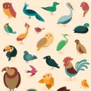 Genera Avis - Genera Piscis. A Design und Illustration project by Raquel Jove - 27.05.2014