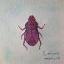 Pinky beetle! . Um projeto de Design, Ilustração, Artesanato, Artes plásticas e Pintura de María Contreras - 12.07.2014